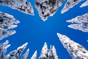 north-finland-pic1
